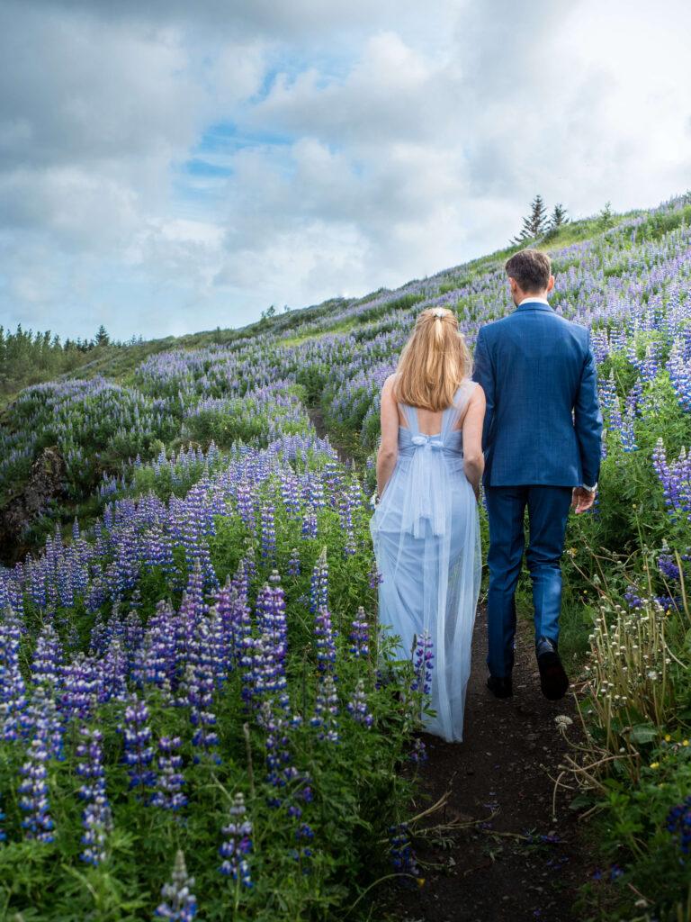 Bride and groom walking along lupine field
