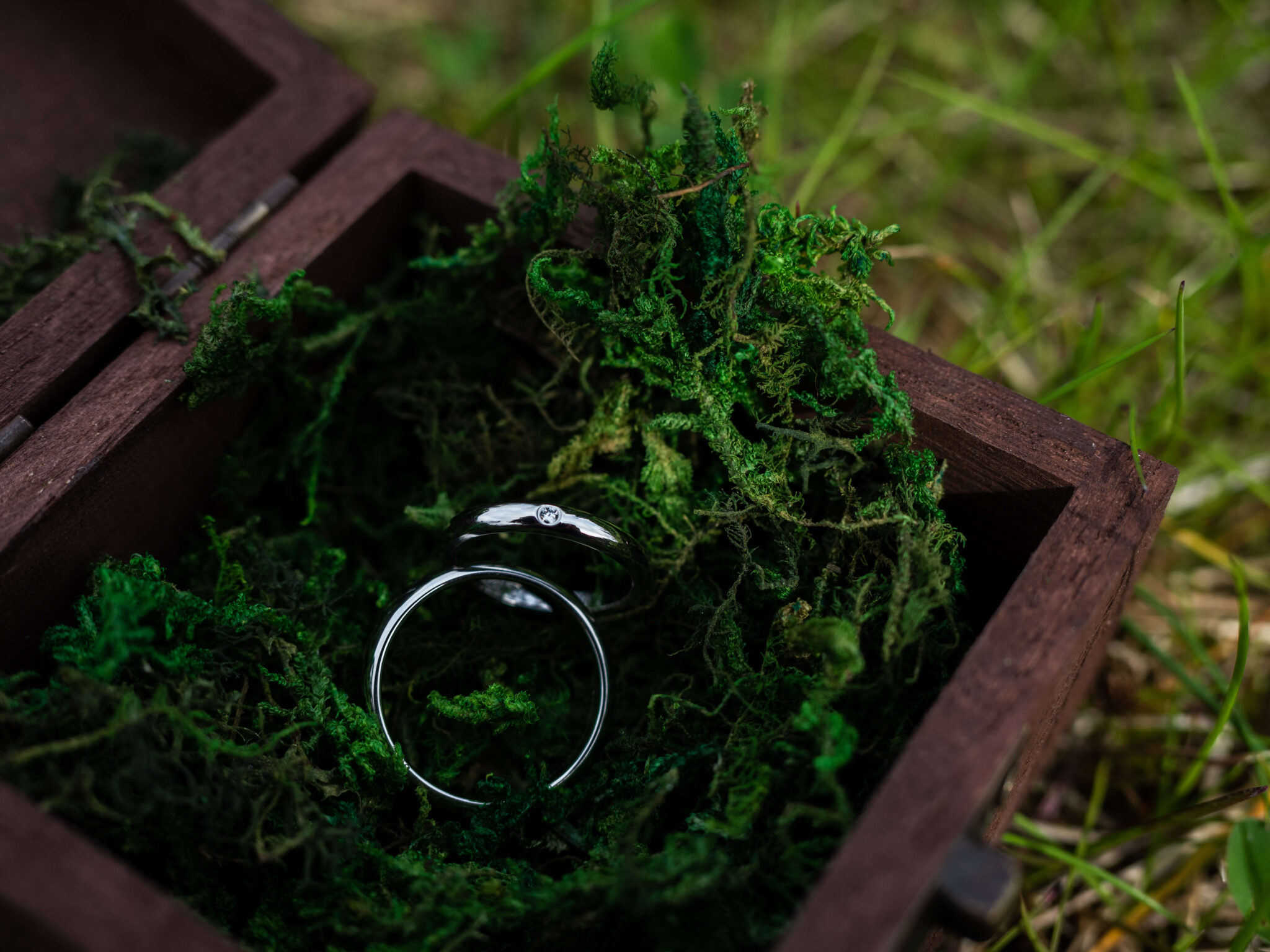 Wedding rings detail photo with wooden box and green moss
