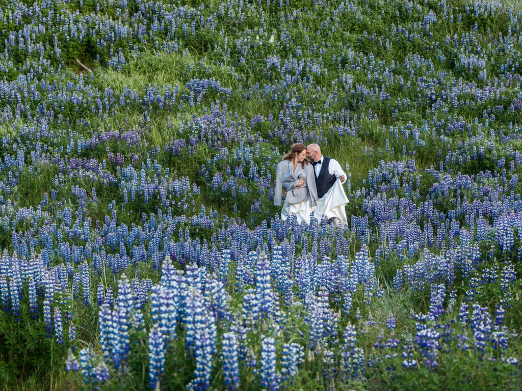 Wedding in Vik, Iceland, couple standing in the field full of flowers