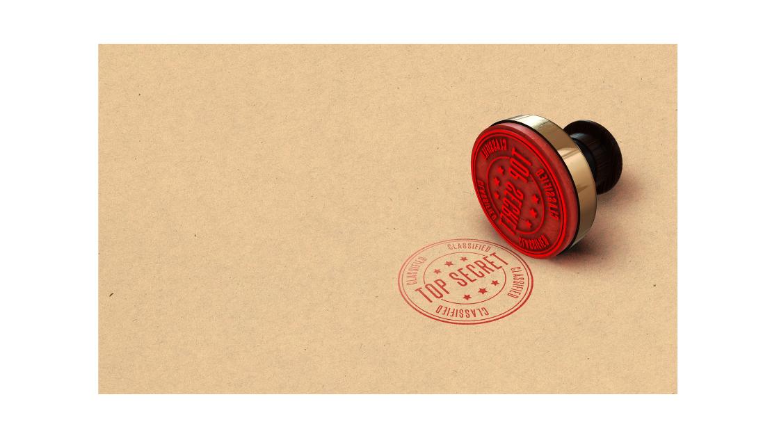 how to organize perfect secret proposal photoshoot